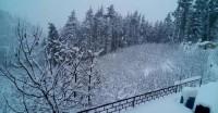 हिमाचल प्रदेश में बर्फबारी और बारिश की संभावना, दक्षिण में तेज होगा चक्रवात 'गाजा'