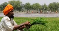 इजरायली तकनीक से जल संरक्षण में पंजाब के किसानों को मिलेगी मदद-मुख्यमंत्री