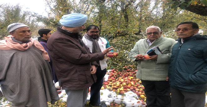 एआईकेएससीसी के सात सदस्यीय प्रतिनिधिमंडल ने 13 से 15 नवंबर तक जम्मू-कश्मीर का दौरा कर सेब और केसर के साथ ही अन्य बागवानी फसलों का जायजा लिया