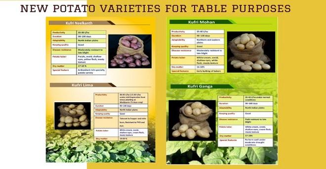 भारतीय कृषि अनुसंधान परिषद द्वारा आलू की नई किस्में जारी की गई