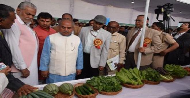 पूसा कृषि विज्ञान मेले के अवसर पर देशभर से आये उद्यमियों द्वारा लगाए गए स्टाल्स का व पूसा द्वारा विकसित की जा रही विभिन्न किस्मों का अवलोकन किया।