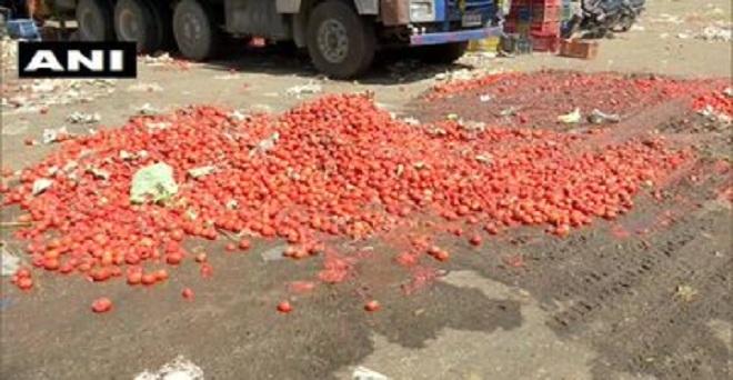 लॉकडान के कारण टमाटर की मांग पर भी असर पड़ा है, जिस कारण किसान सड़कों पर फैकने का मजबूर हैं