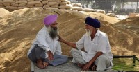 धान में नमी की मात्रा बढ़ाने की मांग को लेकर पंजाब के किसान सड़क पर