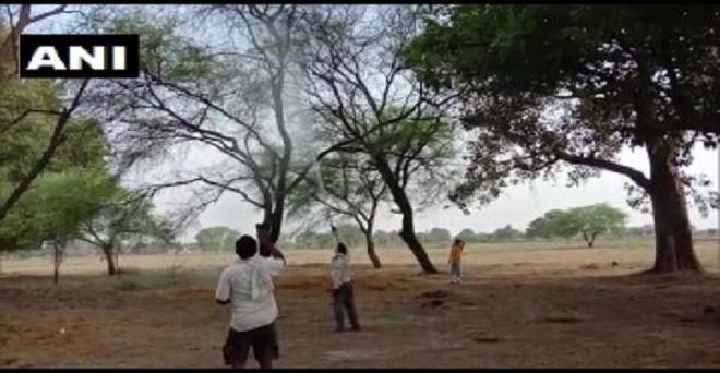 उत्तर प्रदेश: टिड्डी दल बांदा पहुंचा, कृषि व अग्निशमन विभाग टिड्डी दल पर काबू पाने में जुटा।