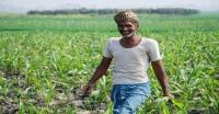 मानसूनी बारिश सामान्य से 10 फीसदी कम, खरीफ फसलों की बुवाई 0.61 फीसदी बढ़ी