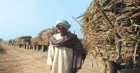 शाहजहांपुर के किसानों का चीनी मिलों पर 480 करोड़ रुपये बकाया-जितिन प्रसाद