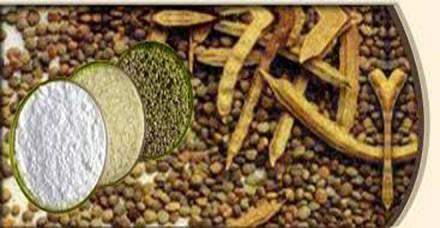 ग्वार गम उत्पादों का निर्यात मूल्य में बढ़ा, मात्रा में घटा