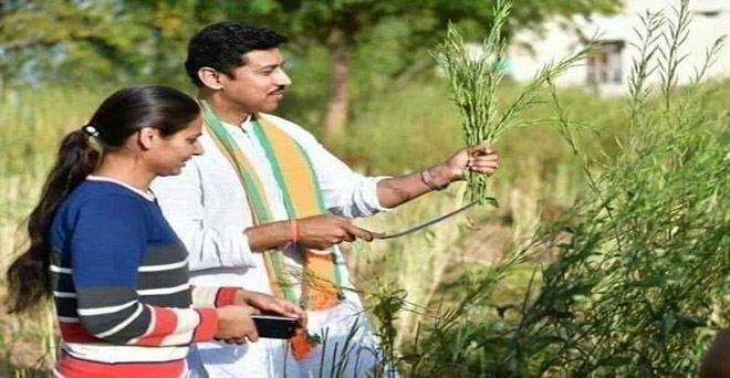 केंद्रीय खेल मंत्री राज्यवर्धन सिंह राठौड़ सरसों की फसल की कटाई कर रहे हैं, लेकिन फसल अभी पकी नहीं है