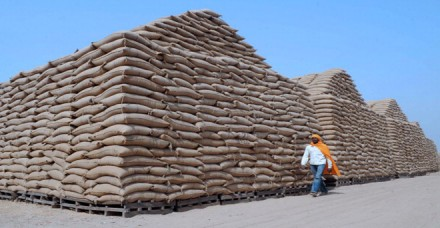 खाद्यान्न की बंपर खरीद ने बढ़ाई सरकार की मुश्किल, राज्यों से मांगी भंडारण की रिपोर्ट