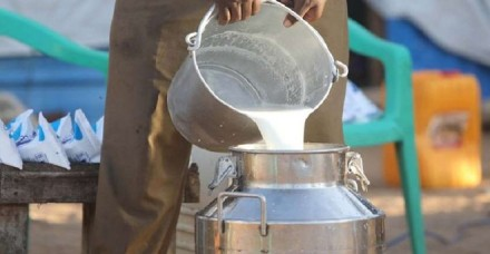 अमूल के बाद अन्य कंपनियां भी बढ़ा सकती है दूध के दाम, उत्पादन में 4 से 5 फीसदी की कमी