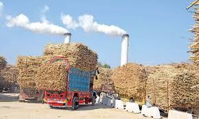 कैबिनेट: चीनी निर्यात के लिए 3500 करोड़ रुपये सब्सिडी की मंजूरी, गन्ना किसानों के खाते में सीधे जाएगा पैसा