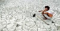 देशभर के किसान 10 दिन रहेंगे अवकाश पर, दूध, फल और सब्जियां नहीं बेचेंगे