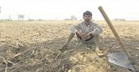 उत्तर प्रदेश, गुजरात समेत कई राज्यों में बारिश में भारी कमी, किसानों की चिंता बढ़ी