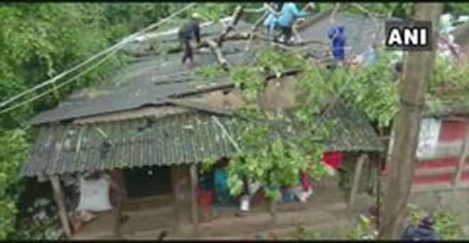 ओडिशा के भद्रक में चक्रवात बुलबुल के कारण बारिश और तेज हवाओं के कारण मकानों पर पेड़ गिर गए