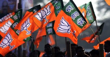 निकाय चुनाव: आतंक प्रभावित दक्षिण कश्मीर के चार जिलों में भाजपा की जीत