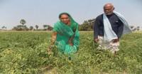 कृषि क्षेत्र की बढ़ोतरी के लिए निवेश में सब्सिडी जरूरी-जेटली