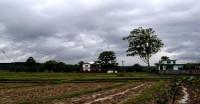 देश के 68 फीसदी इलाकों में ही हुई सामान्य बारिश, 31 फीसदी क्षेत्रफल में कम