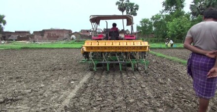 रबी फसलों की बुआई 11.59 फीसदी पिछे, गेहूं और दलहन पर ज्यादा असर