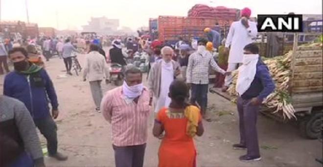 लॉकडाउन के दौरान पंजाब के अमृतसर में थोक सब्जी मंडी में सब्जियों की खरीद करते ग्राहक
