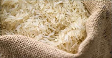 चावल निर्यात मामले में सऊदी अरब से वार्ता करेगी सरकार, कीटनाशक कम उपयोग की है मांग