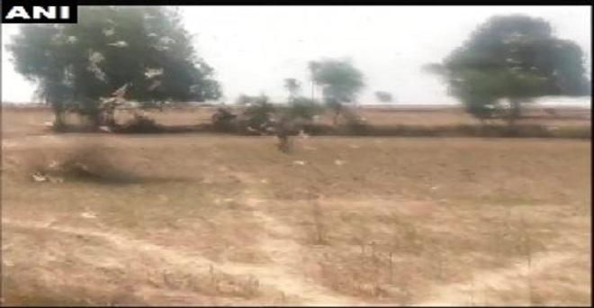 मध्य प्रदेश: श्योपुर में टिड्डी दल ने हमला किया। पी. गुजरे, उपसंचालक कृषि विभाग ने बताया कि प्रशासन की ओर से हमने टिड्डी दल को मारने के लिए टीमों का गठन किया है