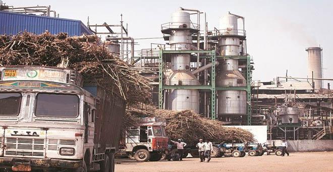 यूपी में गन्ना किसानों का 8447 करोड़ रुपये बकाया, नए सीजन की कड़वी शुरूआत