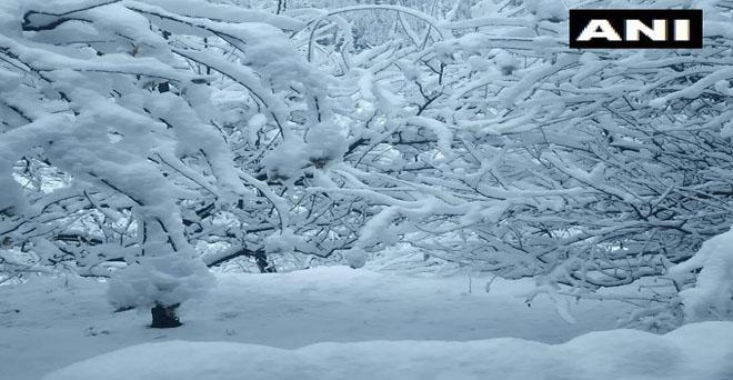 हिमाचल प्रदेश के किन्नौर जिले की सांगला घाटी में भारी बर्फबारी हुई