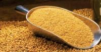 डीओसी निर्यात 6.5 फीसदी बढ़ा, चीन और ईरान की आयात मांग आगे बढ़ने की उम्मीद