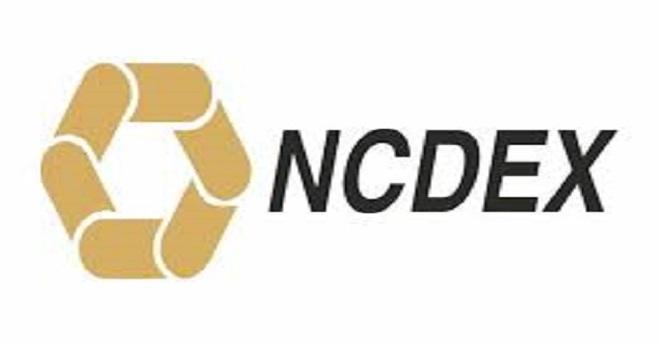 एनसीडीईएक्स ने आईपीओ लाने के लिये सेबी को सौंपे दस्तावेज