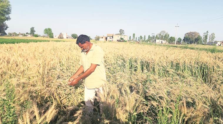 राहत पैकेज के हकदार किसान भी